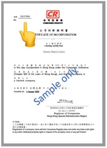Company Registration Number